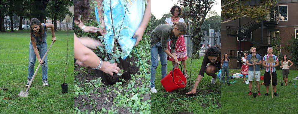 Drzewka zasadzili studenci z Mediolanu. fot. ARC