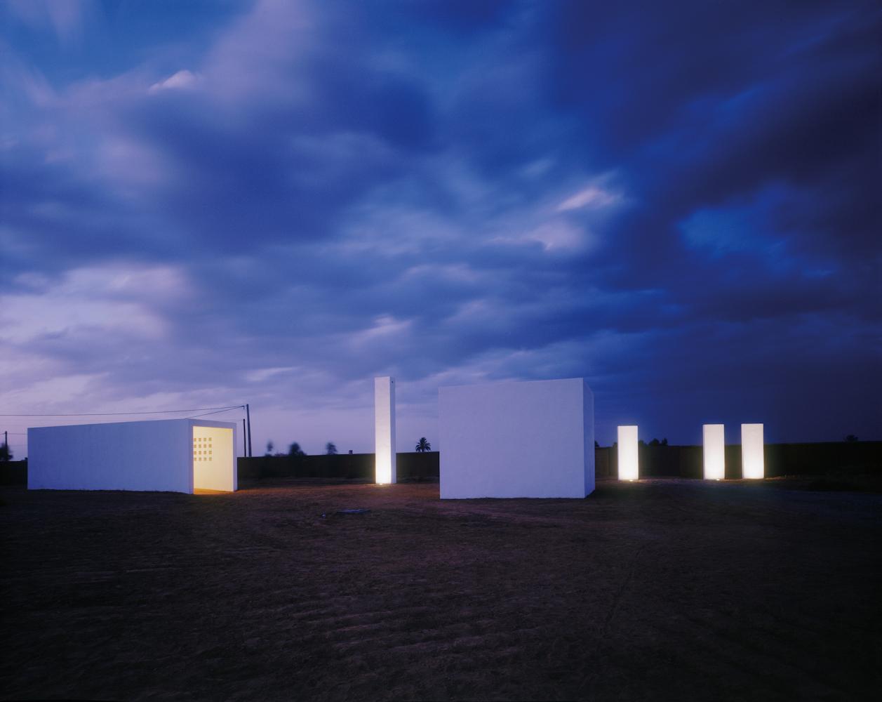 Goście pustyni [zdjęcia]