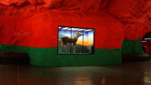 Najdłuższa galeria świata