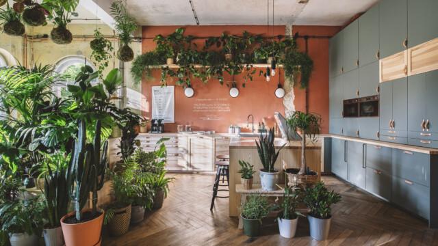 IKEA otworzyła Dom Jutra, wyjątkowe miejsce inspirujące do zmian