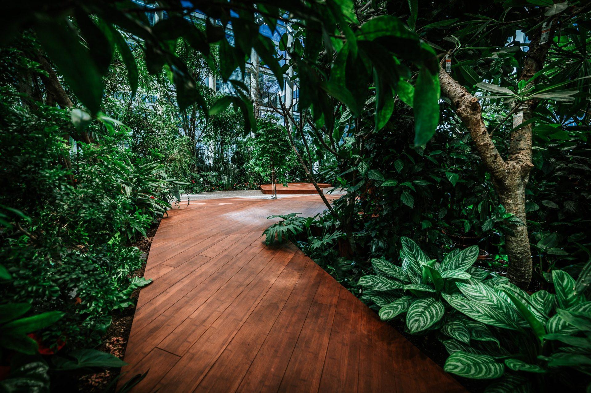olivia_garden_designalive-11