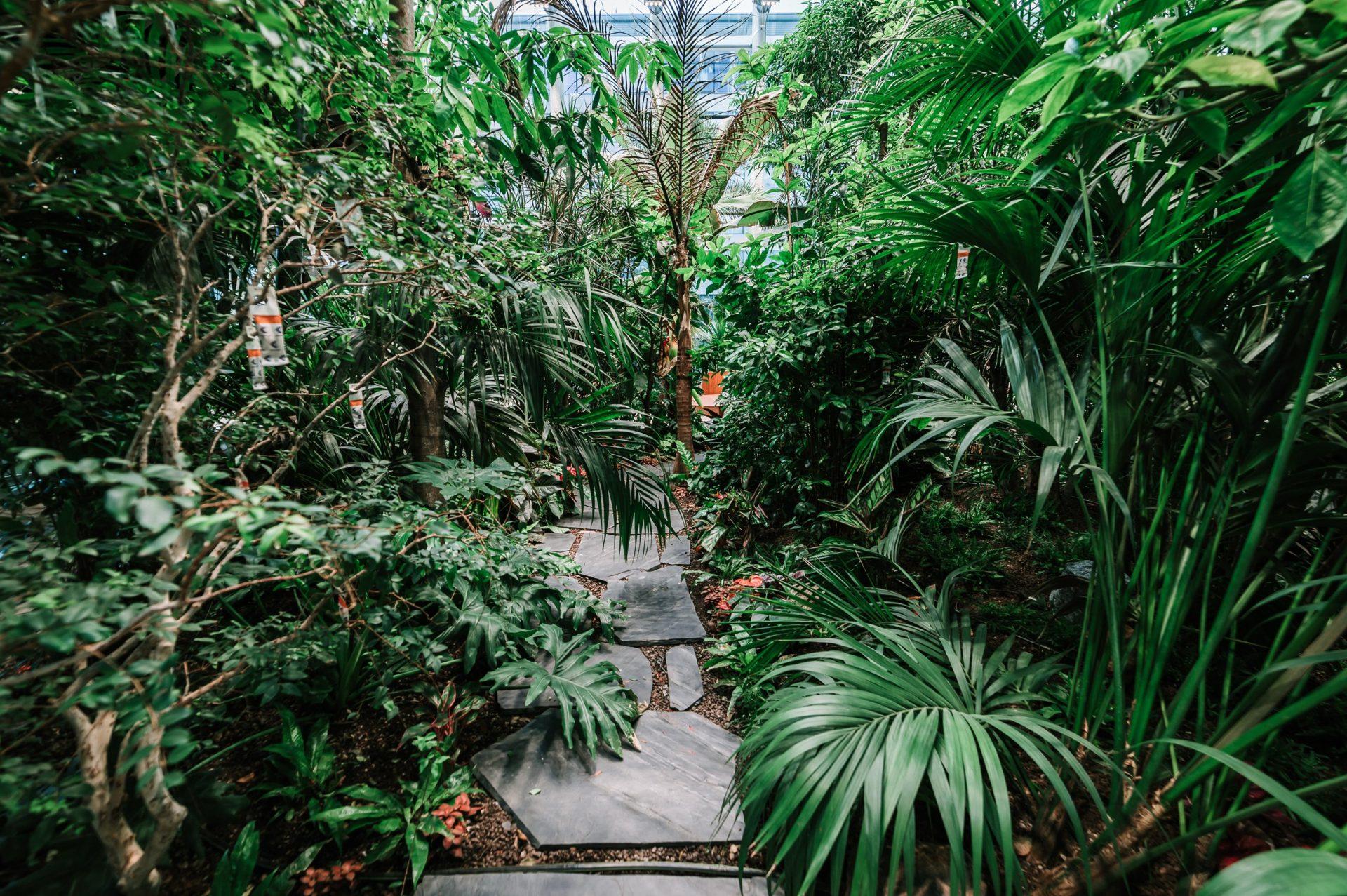 olivia_garden_designalive-22