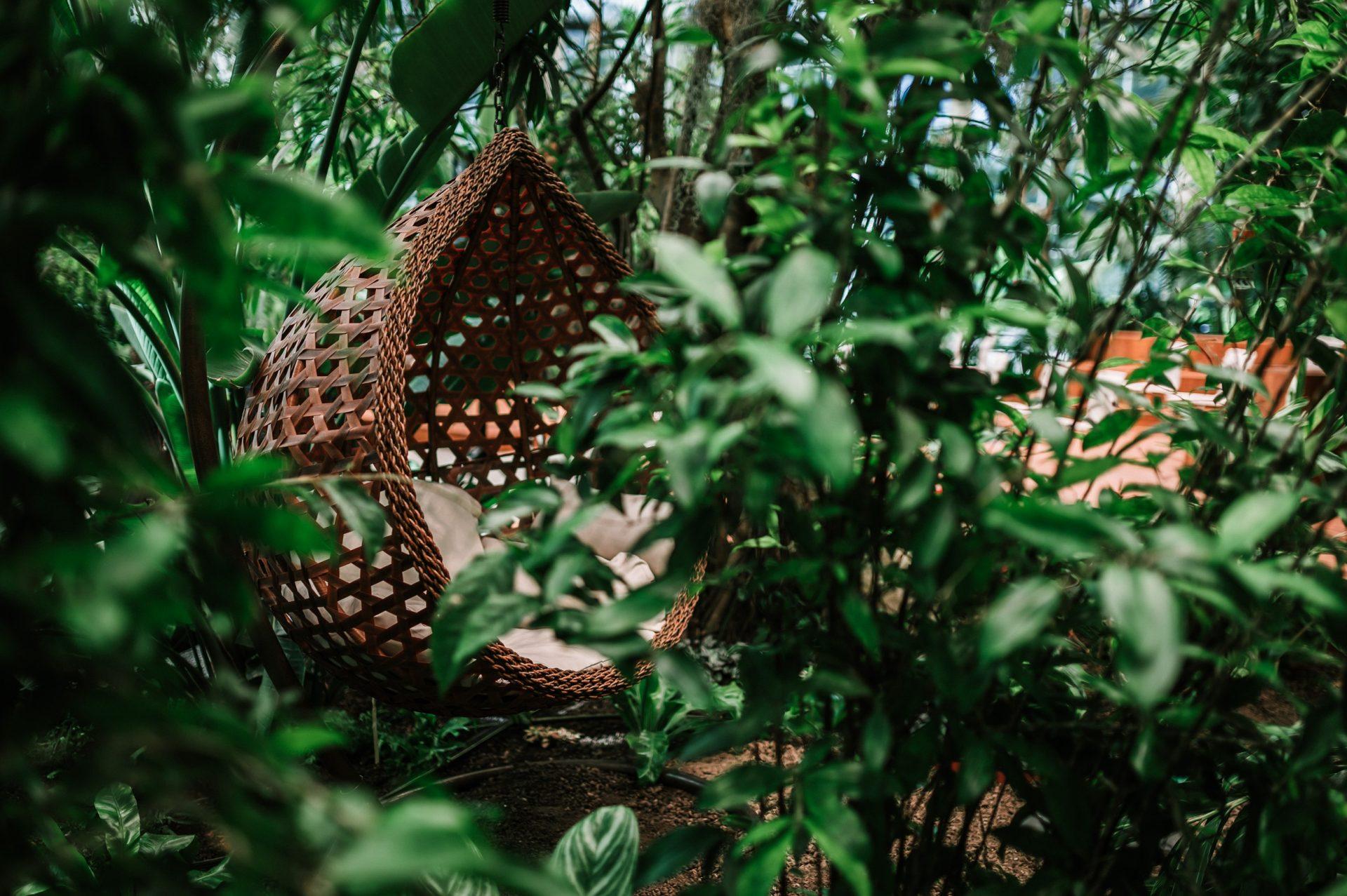 olivia_garden_designalive-24