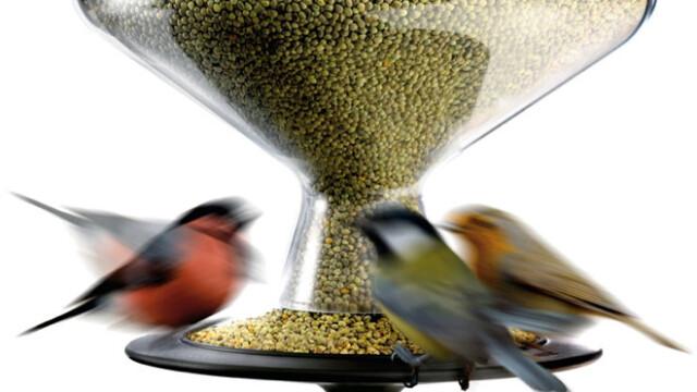Ptaszki też lubią dobry design