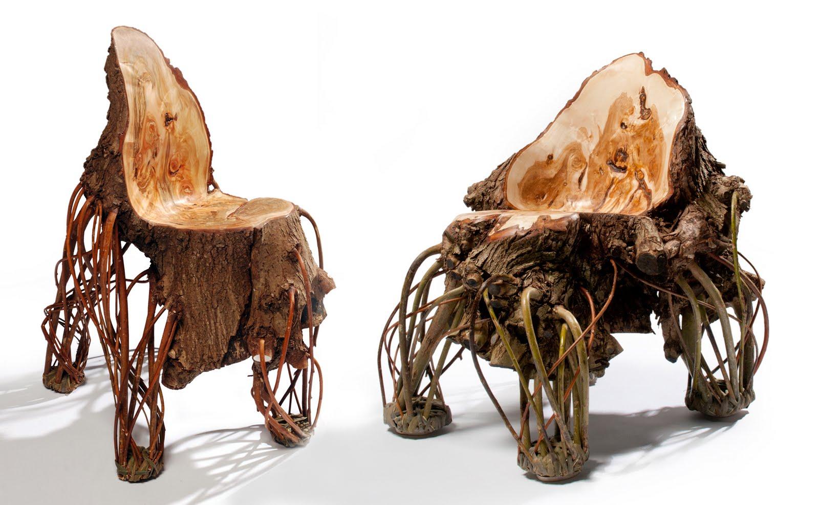 Krzesło wyrosłe z wierzby