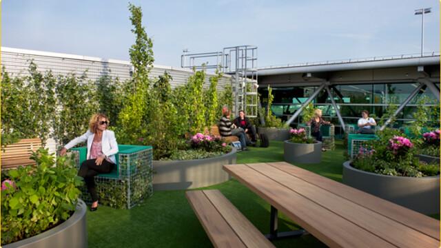 W Amsterdamie powstał nowy park. Na lotnisku