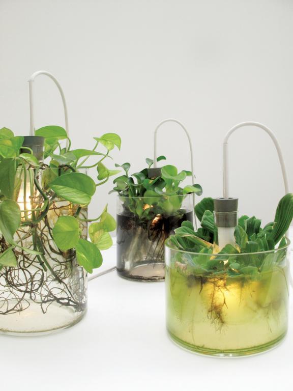 Ten obiekt to połączenie wazonu oraz lampy. fot. Materiały prasowe