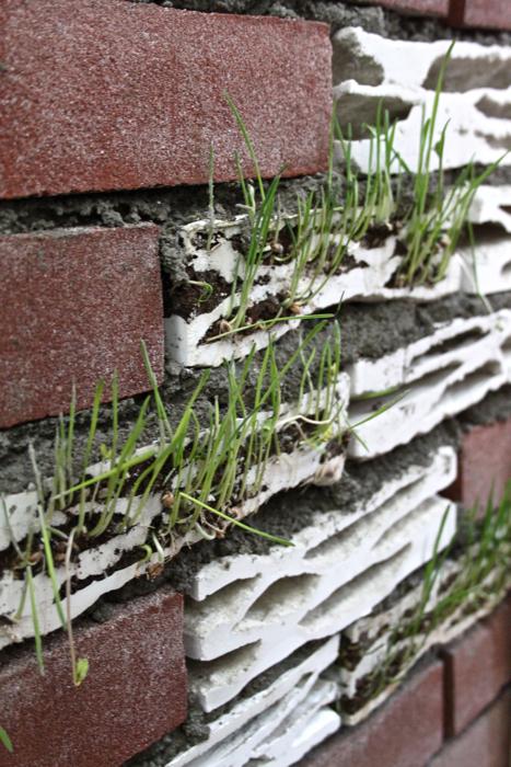 Brick Biotope to przyjazne cegły, które można stosować w standardowych murach. fot. Materiały prasowe