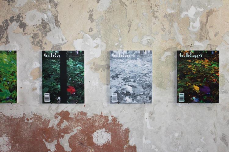 Lasy polskie jak gabinet osobliwości