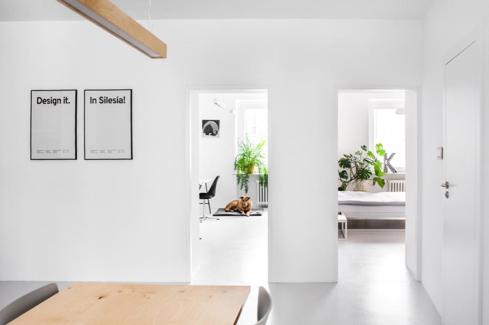 Mieszkanie pełne światła