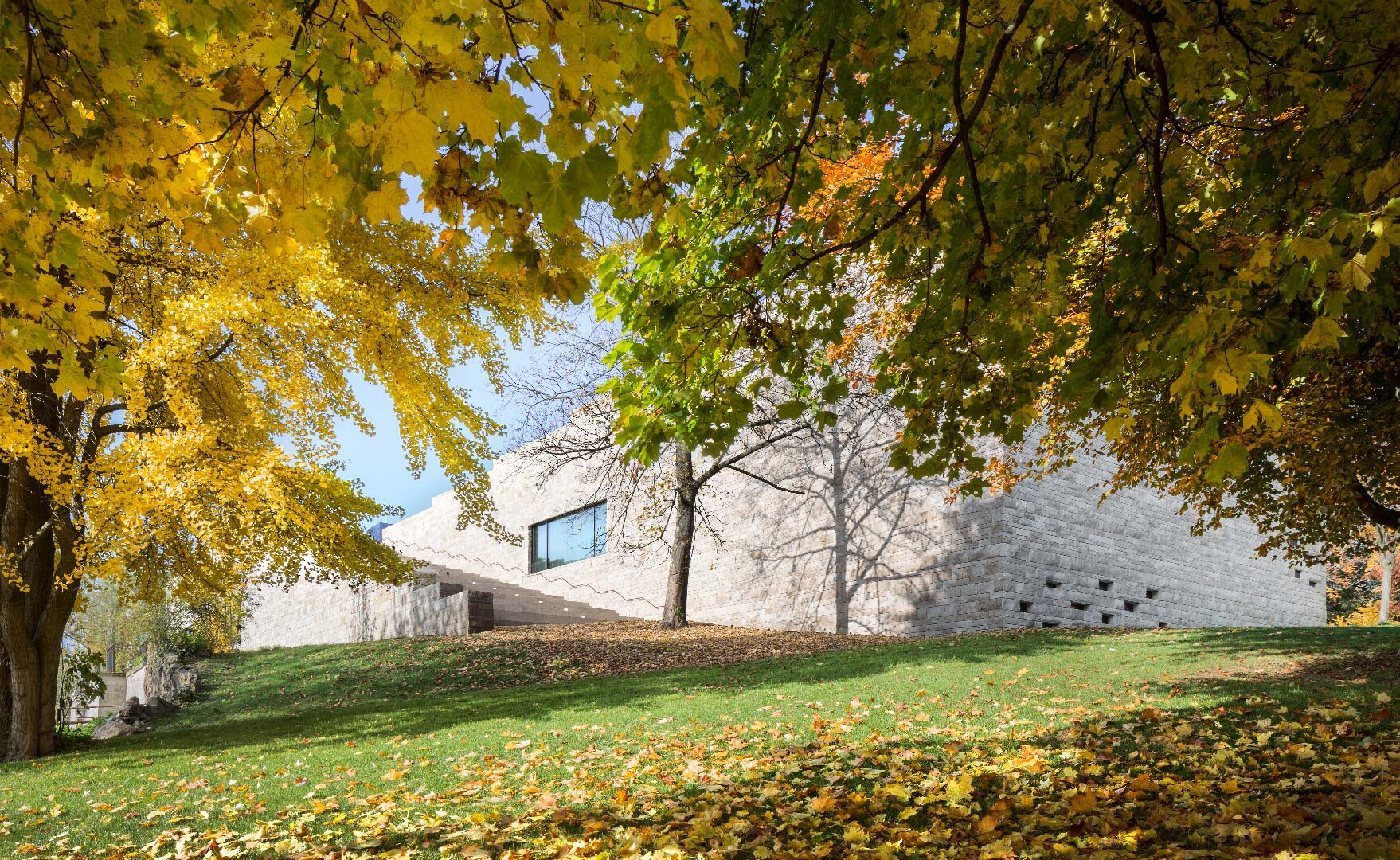 Muzeum Grimmwelt, Kada Wittfeld Architekci
