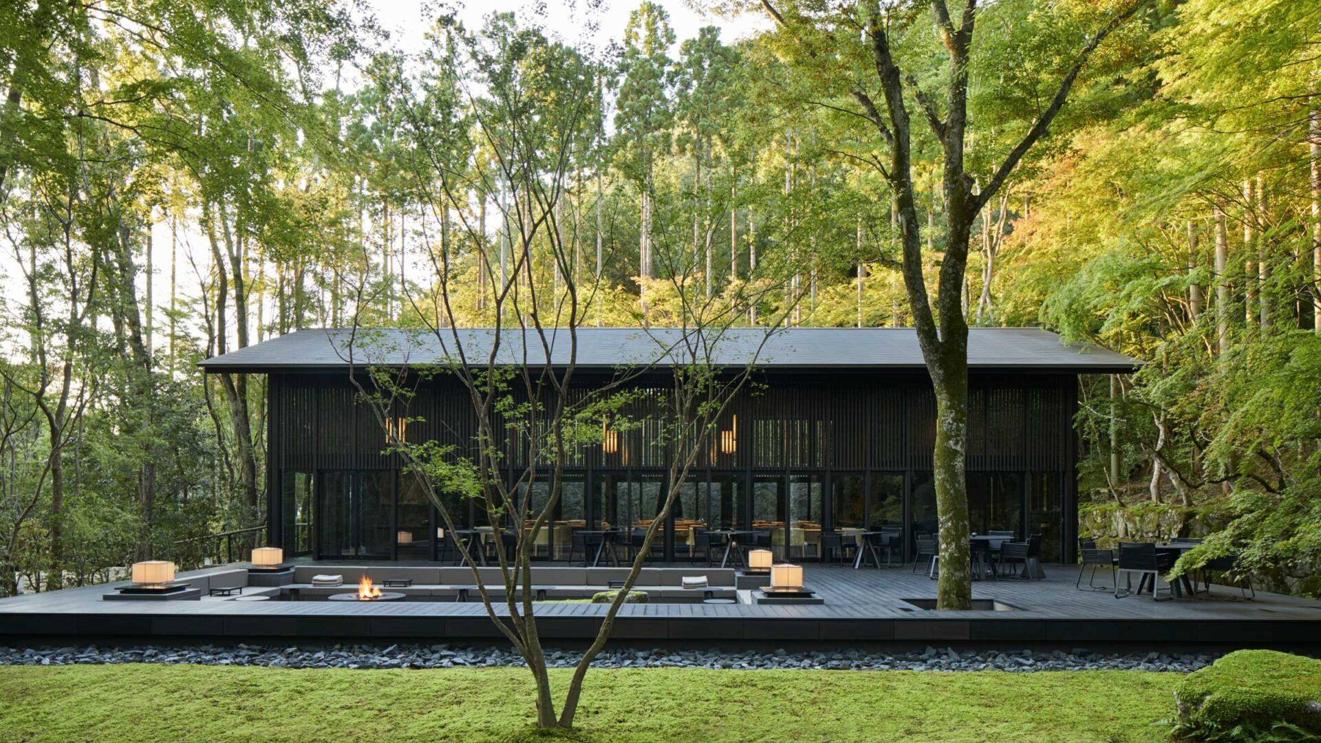 Leśne sanktuarium zen zawieszone w czasie i przestrzeni